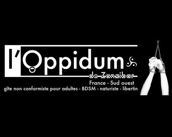 The Oppidum